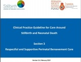 Clinical Practice Guidelines for care around stillbirth and neonatal death